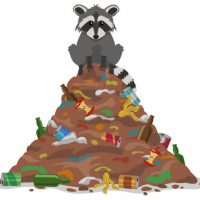 A cute raccoon sits on top of a pile of garbage